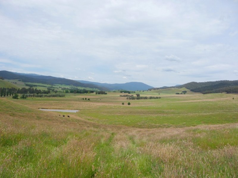 Tallangatta Creek Road, Tallangatta Valley, Vic 3701