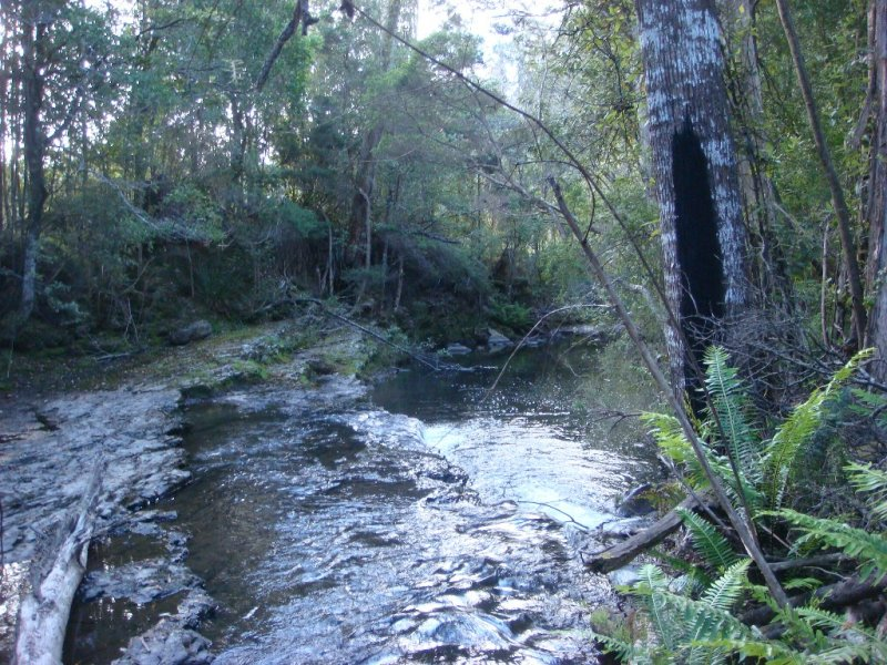 336 Brown Mountain Road, Karoola, Tas 7267