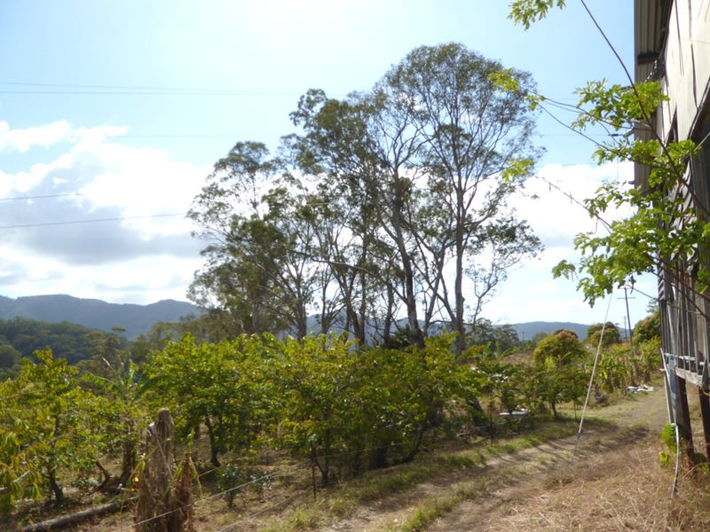 Lot 7 Palmwoods Road,, Palmwoods, NSW 2482