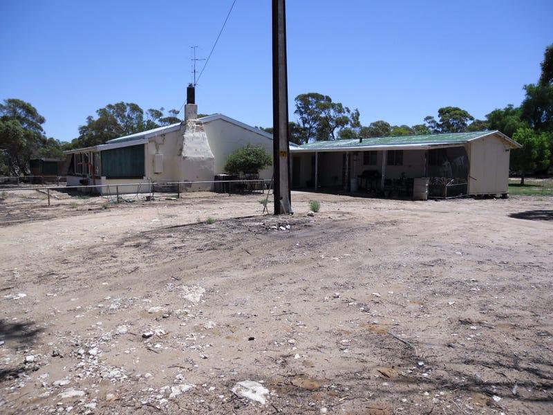 35 Stones Track, Karoonda, SA 5307