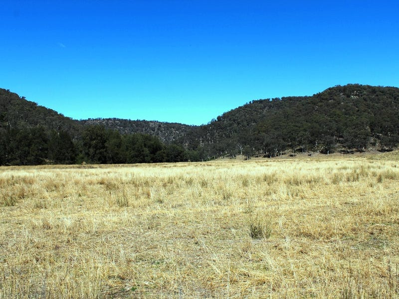 Hungerford Road, Baerami Creek, NSW 2333