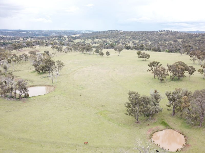 244 Donald Road, Armidale, NSW 2350