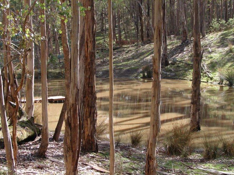 7b Horans Track, Reedy Creek, Vic 3658