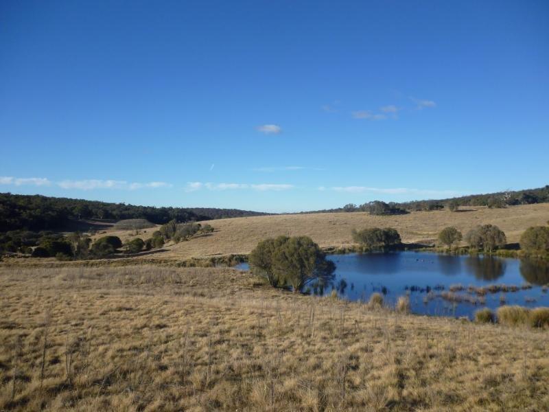 876 Boro Rd, Lower Boro, NSW 2580