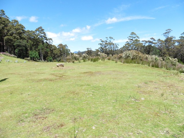 * Lottah Road, Lottah, Weldborough, Tas 7264
