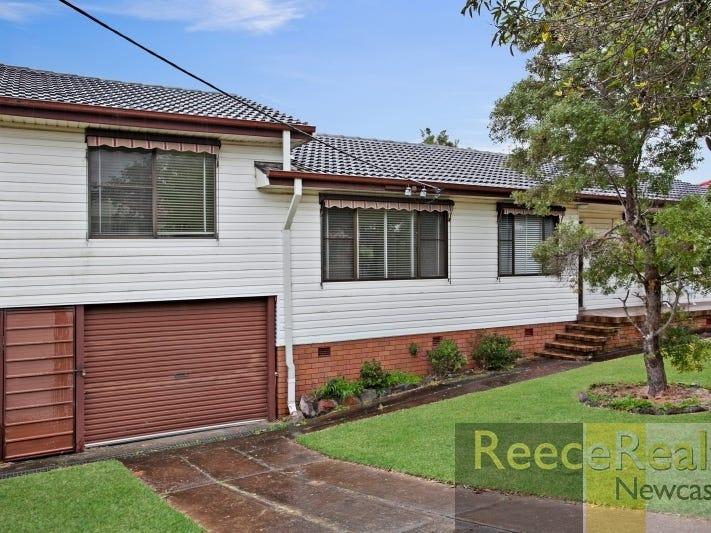 26 Alderson Street, Shortland, NSW 2307