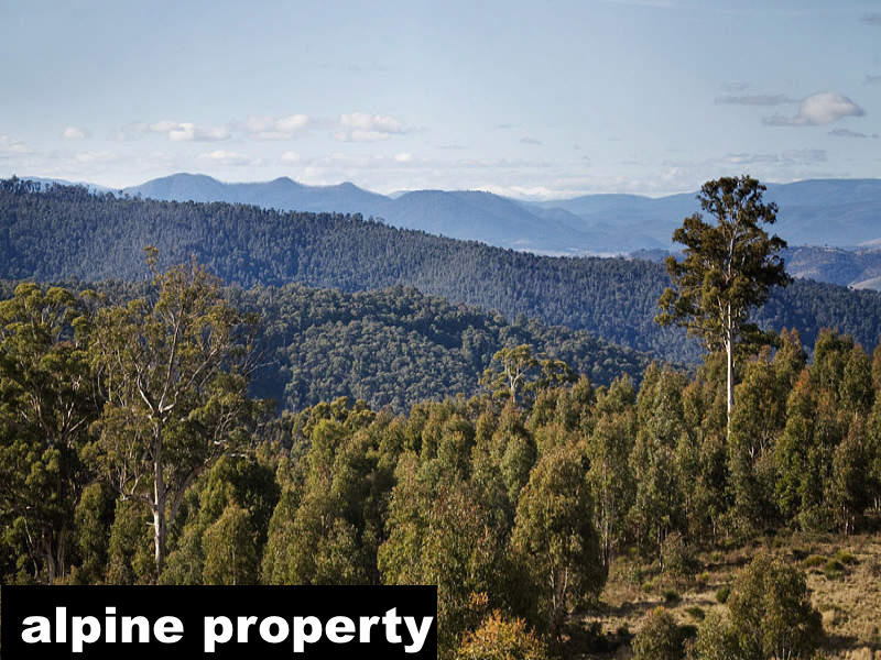 Lot Mt Maid 1, 71 Great Alpine Road, Cobungra, Vic 3898