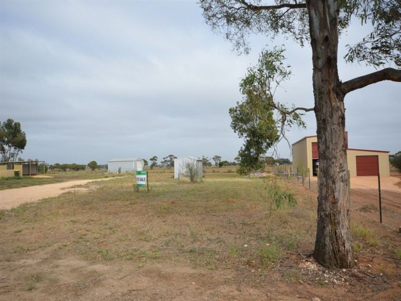 Lot 74 McIntosh Avenue, Pinnaroo, SA 5304