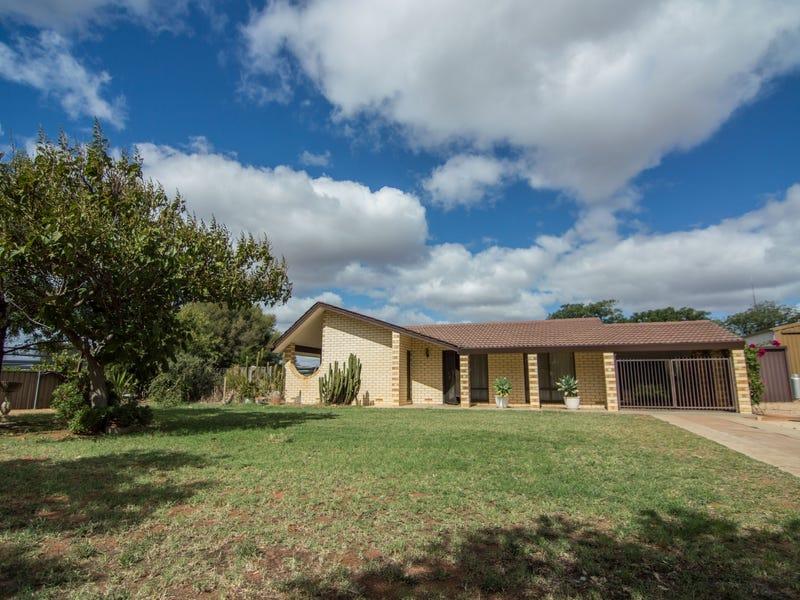 17504 Sturt Highway, Barmera, SA 5345