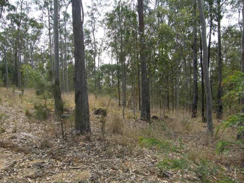 Lot 94 Armidale Road, Blaxlands Creek, NSW 2460