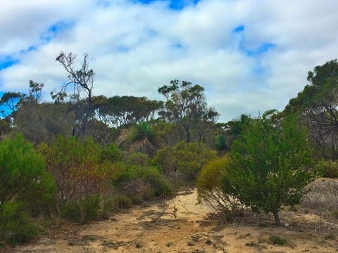 Lot 104, Para Avenue, Cape Jervis, SA 5204