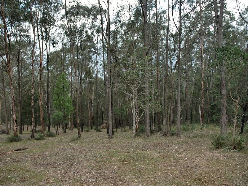 1211, Middle Ridge Road, Wollombi, NSW 2325