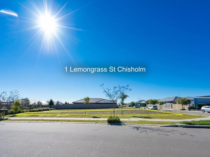 1 and 3 Lemongrass Street, Chisholm, NSW 2322