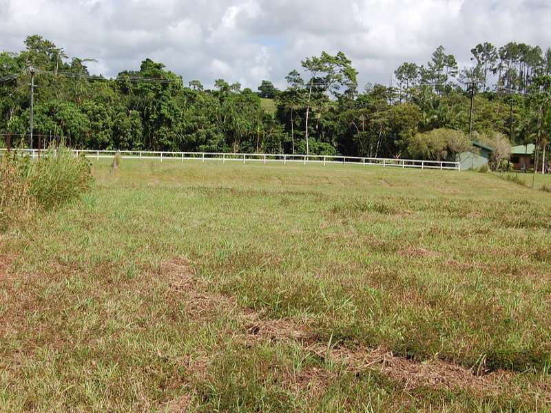2 Witchetty Place, Innisfail, Qld 4860
