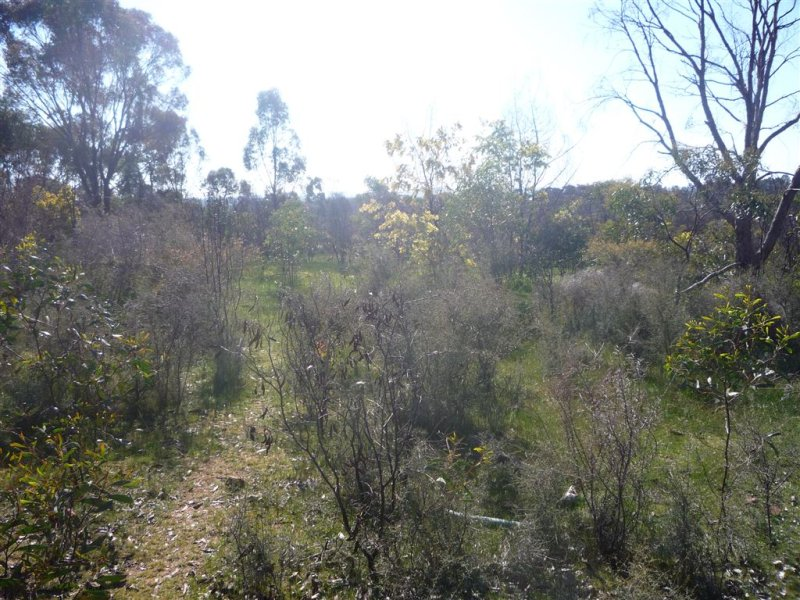 lot 1 BENBOW ROAD, St Arnaud, Vic 3478