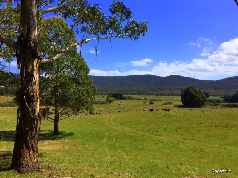 464 Wyanbene Rd, Wyanbene, NSW 2622