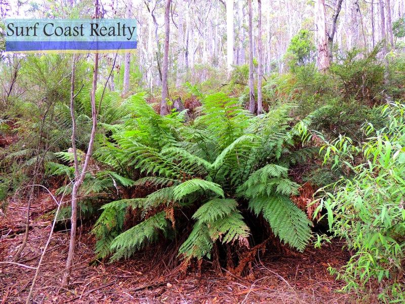 - Gardiners Creek Road, St Marys, Tas 7215