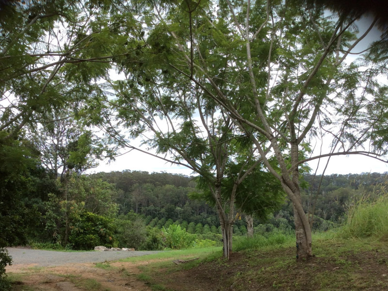 56 Harris Road, Wilsons Pocket, Qld 4570