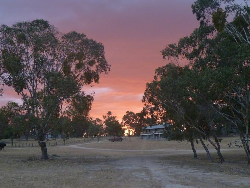 641 Balala Road, Balala, NSW 2358