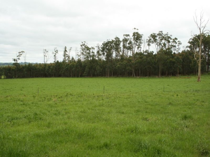 365 Dollar Road, Dumbalk, Vic 3956