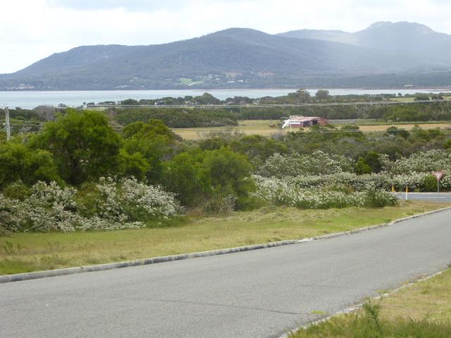 3 Vinegar Hill Drive, Lady Barron, Tas 7255