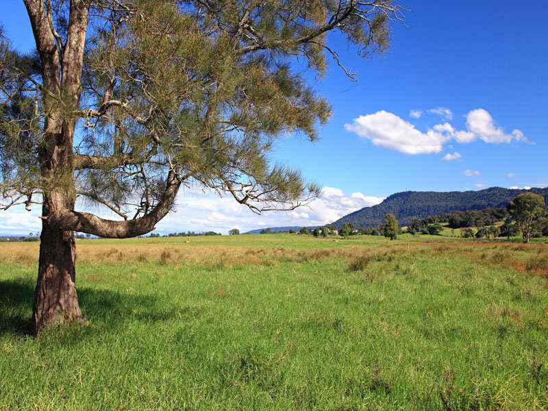 B535 Princes Highway, Jaspers Brush, NSW 2535