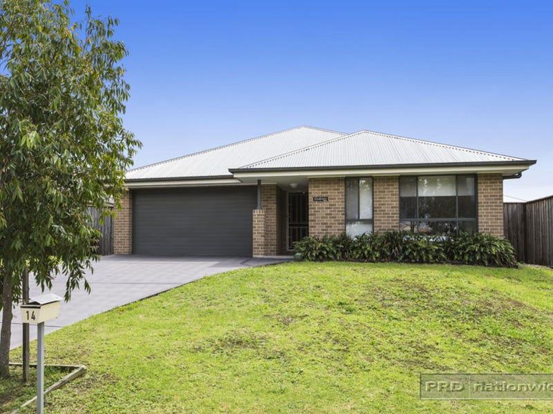 14 Arrowgrass Street, Aberglasslyn, NSW 2320
