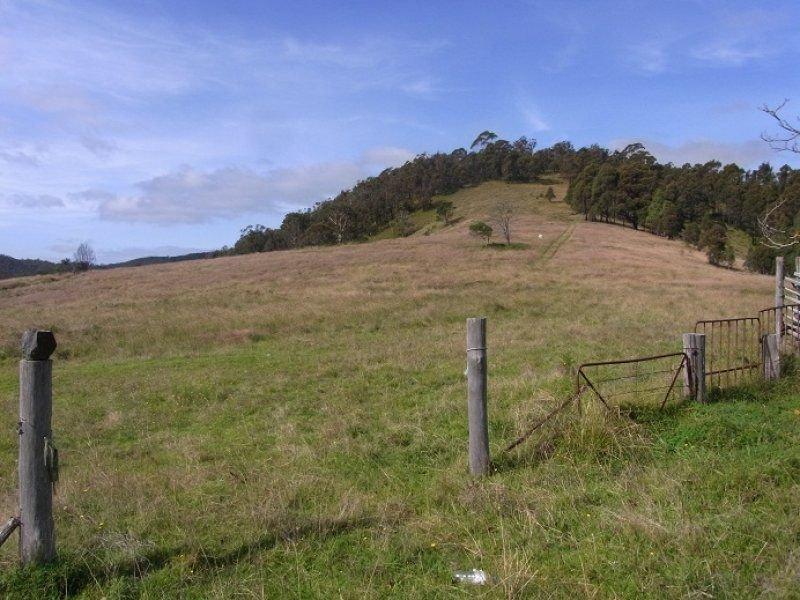 3353 Mt Darragh Road, Wyndham, NSW 2550