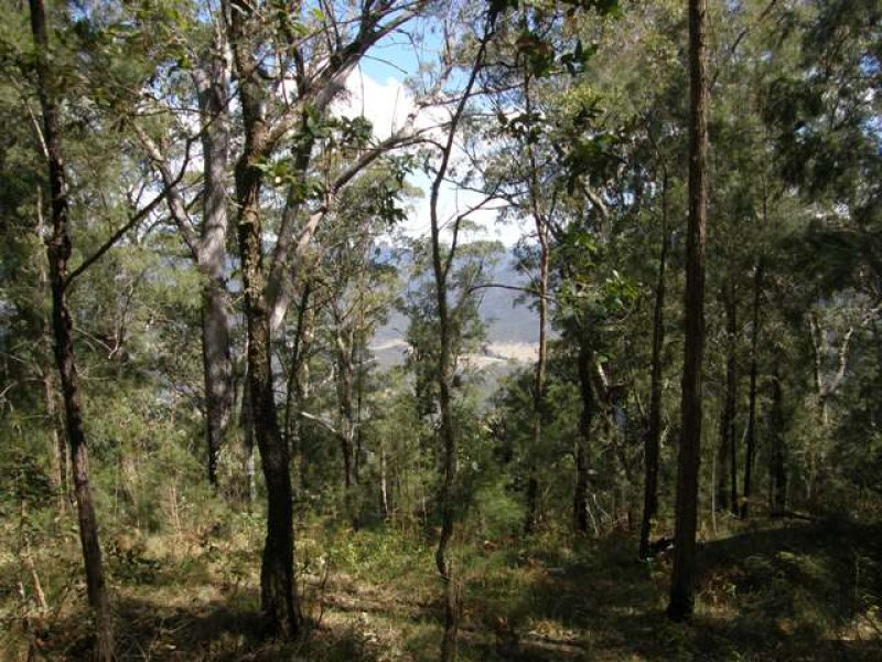 Lot 33 Pine Trees Ridge Fire Trail, Newton Boyd, NSW 2370