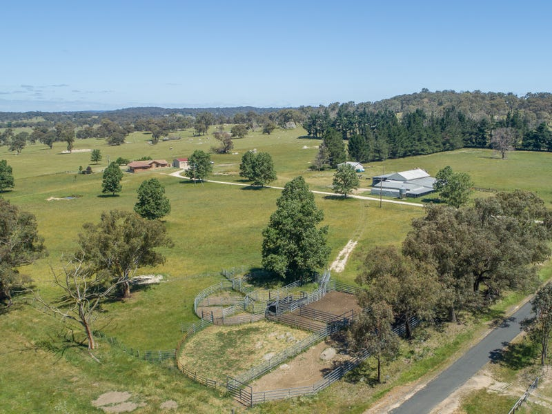 286 Mount Mitchell Road, Guyra, NSW 2365