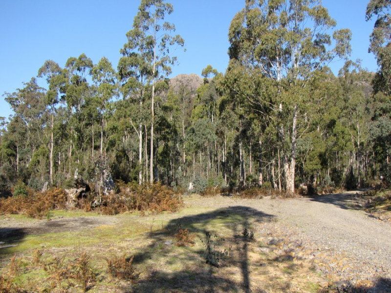 Schulhofs Road, Blessington, Tas 7212