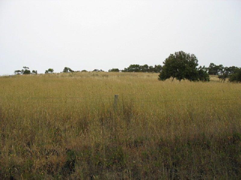 L395 Dairy Flat Road, Torrens Vale, SA 5203