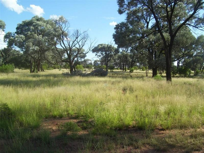 - Myuna Station, Brewarrina, NSW 2839
