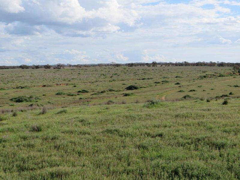 Lot 53 Fauna Road, Brownlow, SA 5374