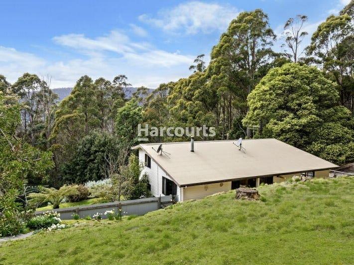 13185 Highland Lakes Road, Golden Valley, Tas 7304