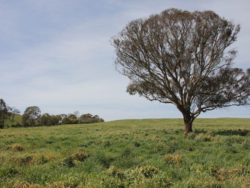 209 Browns Creek Road, Blayney, NSW 2799