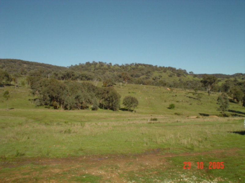 Clark Creek Road, Windeyer, NSW 2850