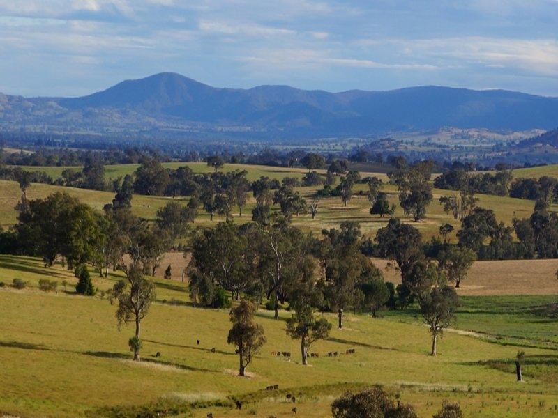 'Billabong' & 'Billabong North', Holbrook, NSW 2644