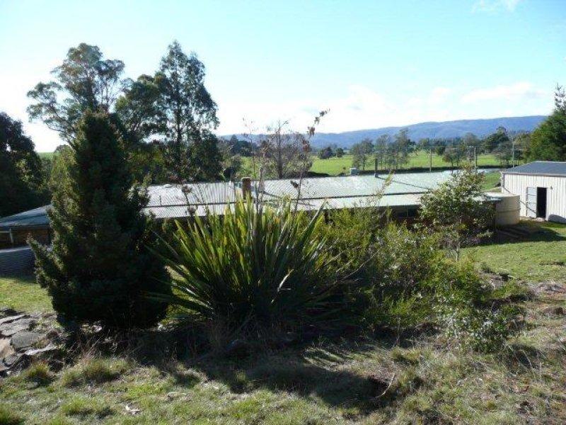 East Maurice Road, Talawa, Ringarooma, Tas 7263