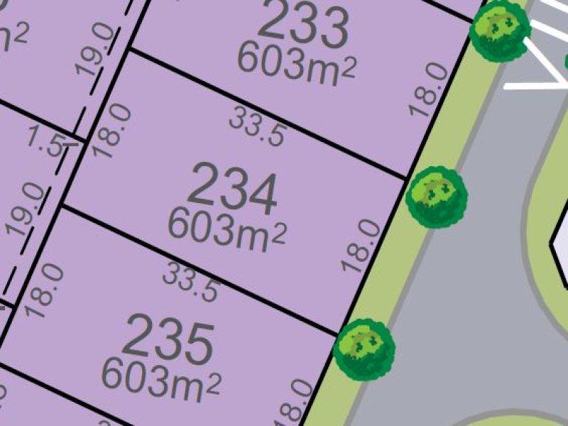 Lot 234, Vine Street, Chisholm, NSW 2322