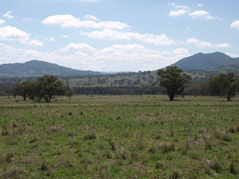 Pandora North, Bundella, NSW 2343