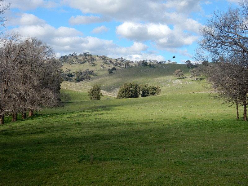Oak Creek - 1771 Darabalara Road, Gundagai, NSW 2722