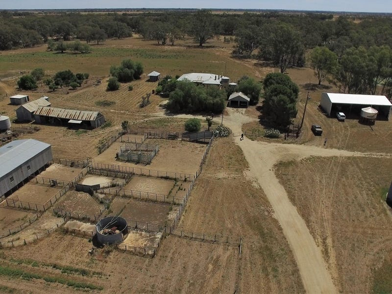 242 Frosts Road, Canary Island, Vic 3537