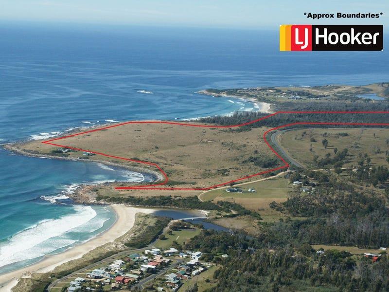 21670 Tasman Highway, Four Mile Creek, Tas 7215