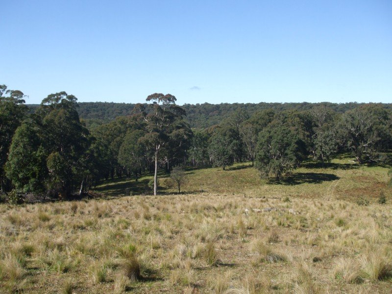 Lot 75 Rivertree Road, Liston, NSW 2372