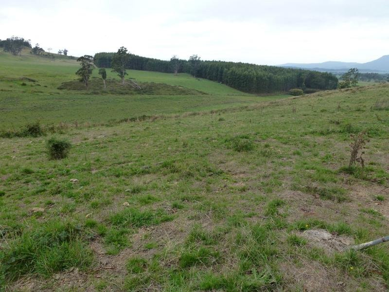 Lot 1, L1 Greenacres Road, Dairy Plains, Tas 7304