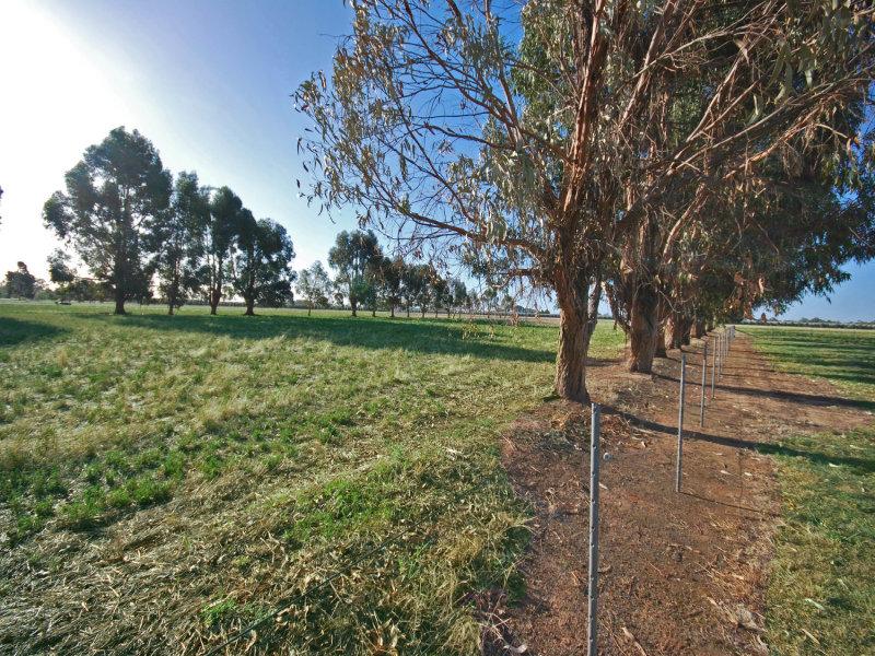 513 McKernan Road, Kialla East, Vic 3631