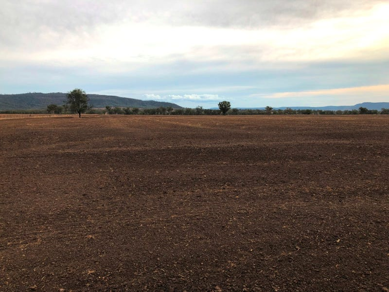 Ferndale, Bingara, NSW 2404