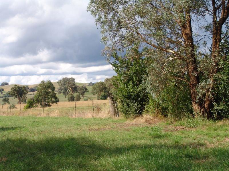 Lot 11/110 Tumbarumba Rd, Humula, NSW 2652