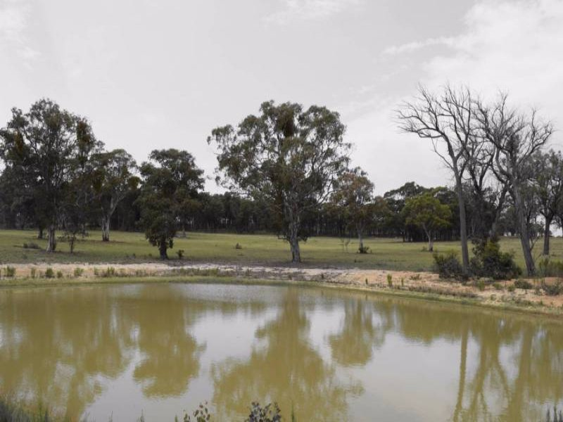 Address available on request, Capertee, NSW 2846